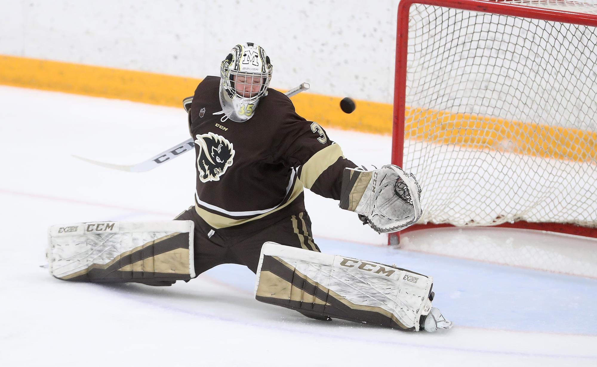 Mhky Bisons Make Late Push But No 2 Golden Bears Win 5 4 In Ot